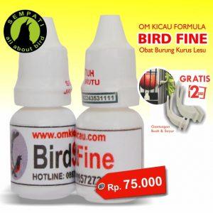 BIRD FINE OM KICAU 1