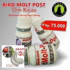 BIRD MOLT POST OM KICAU 1