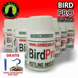 BIRD PRO OM KICAU 2