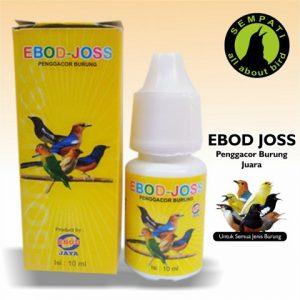 EBOD JOSS EBOD JAYA