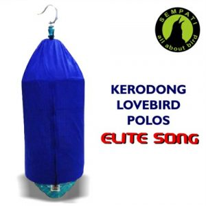 KRODONG LOVEBIRD POLOS ELITESONG LOGO