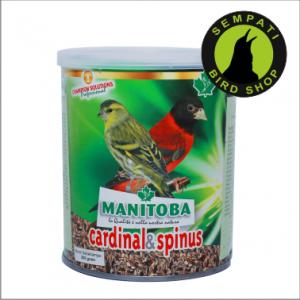MANITOBA CARDINAL & SPINUS