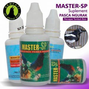 MASTER SP