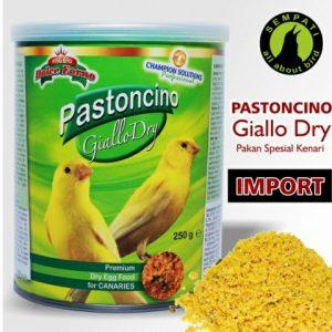PASTONCINO GIALLO DRY