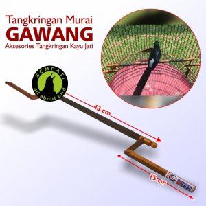 TANGKRINGAN MURAI GAWANG