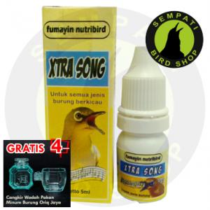 XTRA SONG FUMAYIN NURTI BIRD