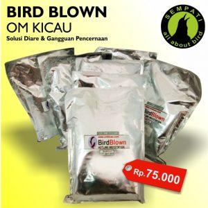 BIRD BLOWN OM KICAU