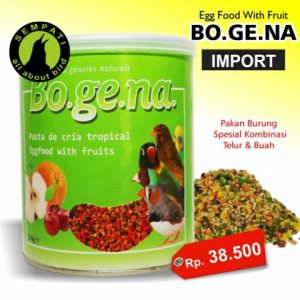 BOGENA EGG FOOD WITH FRUIT