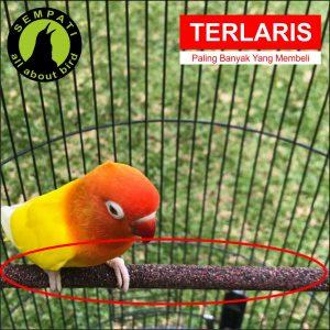 TANGKRINGAN LOVEBIRD PASIR LAUT SEMPATI