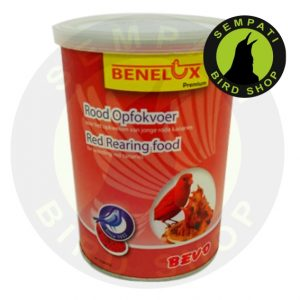 pakan banelux red rearing food