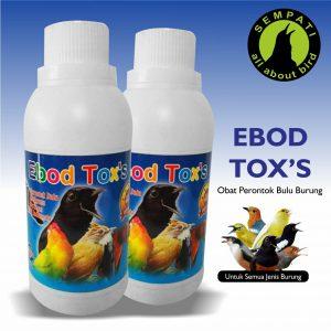 EBOD TOXS EBOD JAYA