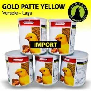 GOLD PATTE YELLOW