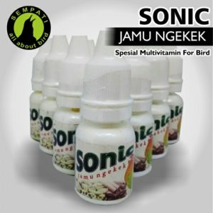 JAMU NGEKEK SONIC 1