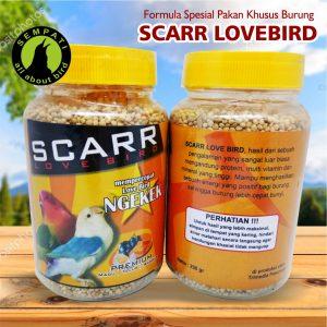 SCARR LOVEBIRD