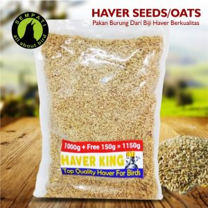 HAVER SEEDS OATS