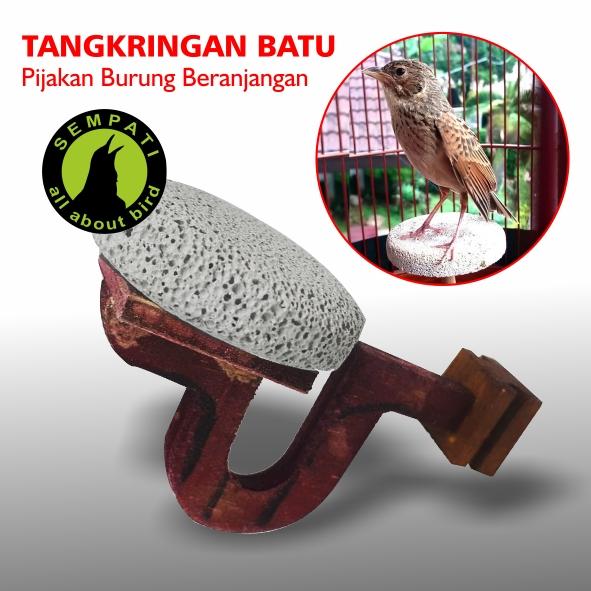 Tangkringan Batu Apung Sangkar Burung Branjangan Sempati Bird Shop
