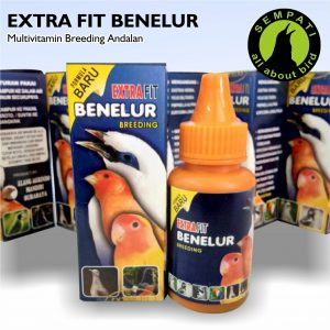 EXTRA FIT BENELUR