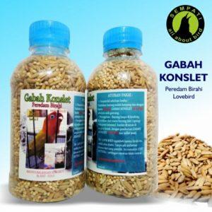 GABAH KONSLET
