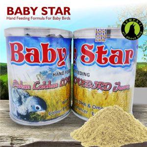 BABY STAR ORIQ JAYA