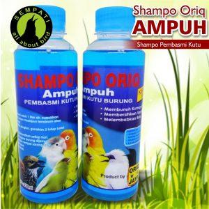 SHAMPO ORIQ AMPUH