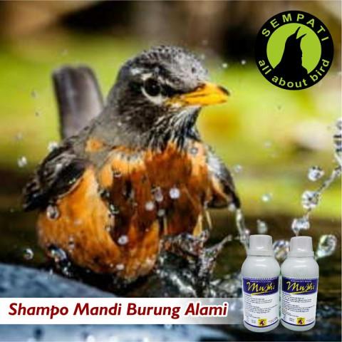 Shamusshi 250 Ml Aristol Obat Shampo Burung Pembasmi Kutu Sempati Bird Shop