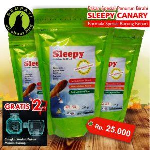SLEEPY CANARY