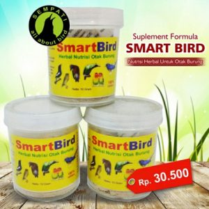 SMART BIRD BURUNG GACOR