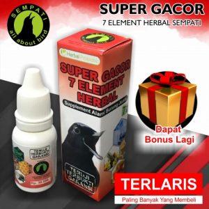 SUPER GACOR SEMPATI (2)