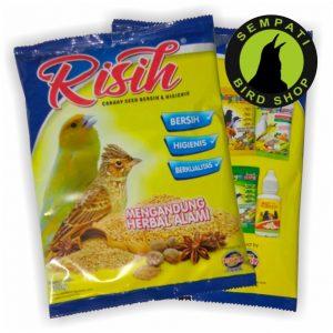 risih (2)
