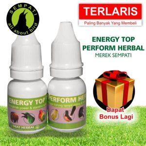 ENERY TOP PERFORM HERBAL 2