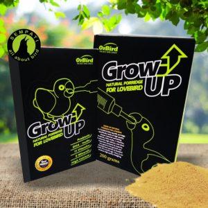 GROW UP NATURAL PORRIDGE ORBIRD