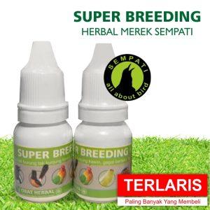 SUPER BREEDING HERBAL SEMPATI