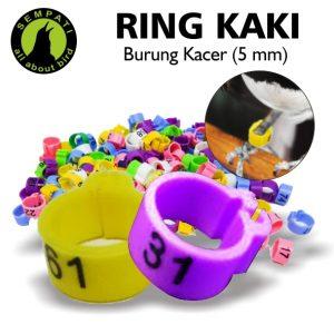 RING JEPIT KACER 5 MM