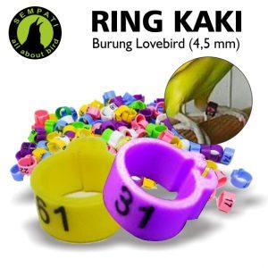 RING JEPIT LOVEBIRD 4,5 MM