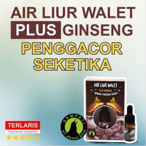 THUMBNAIL AIR LIUR WALET REVISI ACC