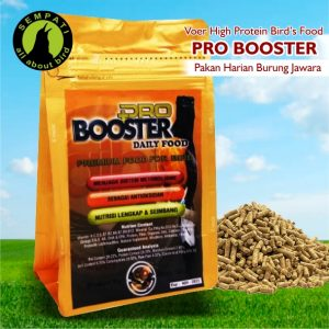 PRO BOOSTER DAILY GOLD