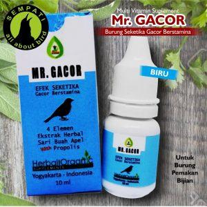 MR GACOR BIRU