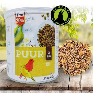 PUUR CANARY