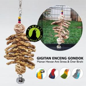 GIGITAN ENCENG GONDOK